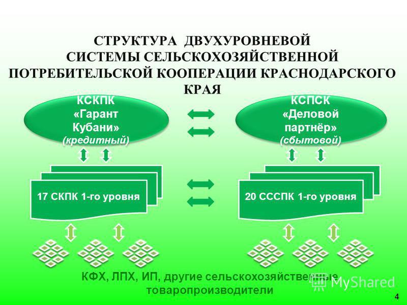СТРУКТУРА ДВУХУРОВНЕВОЙ СИСТЕМЫ СЕЛЬСКОХОЗЯЙСТВЕННОЙ ПОТРЕБИТЕЛЬСКОЙ КООПЕРАЦИИ КРАСНОДАРСКОГО КРАЯ КФХ, ЛПХ, ИП, другие сельскохозяйственные товаропроизводители 17 СКПК 1-го уровня 20 СССПК 1-го уровня КСКПК «Гарант Кубани» (кредитный) КСКПК «Гарант