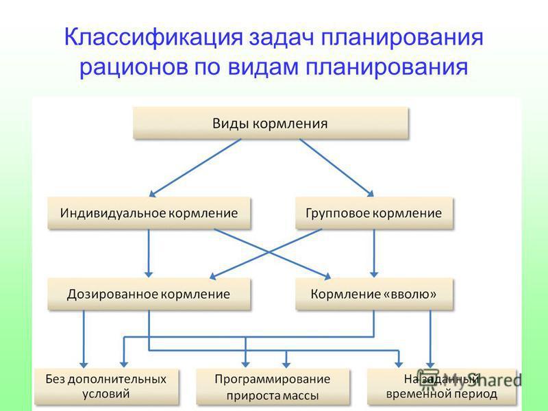 Классификация задач планирования рационов по видам планирования