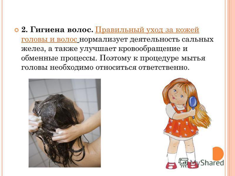 2. Гигиена волос. Правильный уход за кожей головы и волос нормализует деятельность сальных желез, а также улучшает кровообращение и обменные процессы. Поэтому к процедуре мытья головы необходимо относиться ответственно.Правильный уход за кожей головы