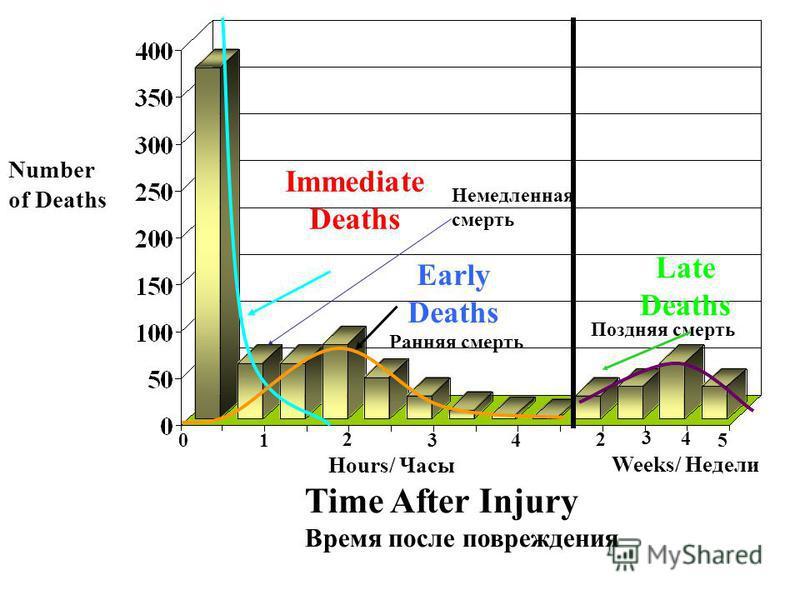 Number of Deaths Time After Injury Время после повреждения 0 1 2 3 4 Hours/ Часы Weeks/ Недели Immediate Deaths Early Deaths Late Deaths 2 3 4 5 Немедленная смерть Ранняя смерть Поздняя смерть