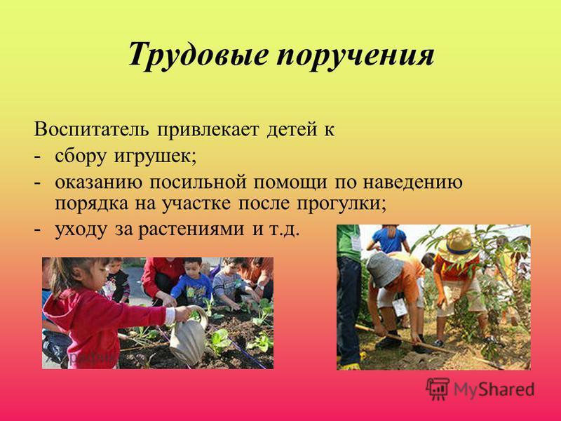 Трудовые поручения Воспитатель привлекает детей к -сбору игрушек; -оказанию посильной помощи по наведению порядка на участке после прогулки; -уходу за растениями и т.д.
