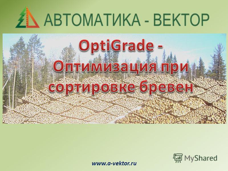 www.a-vektor.ru.