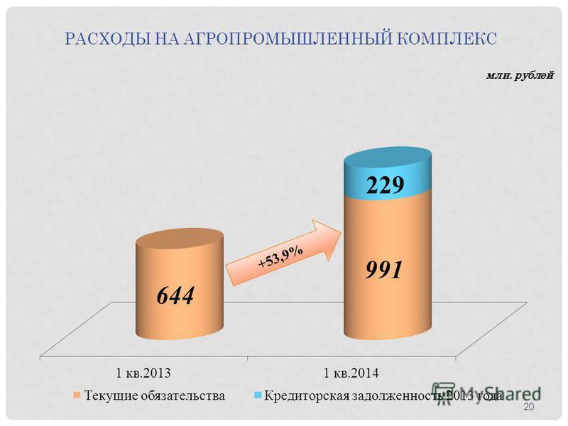 РАСХОДЫ НА АГРОПРОМЫШЛЕННЫЙ КОМПЛЕКС млн. рублей 20