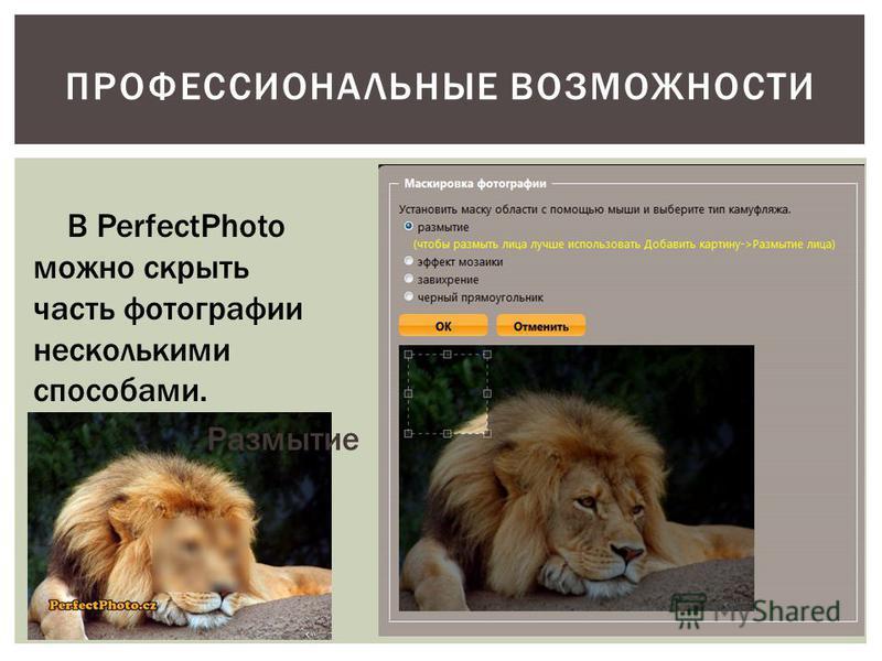 ПРОФЕССИОНАЛЬНЫЕ ВОЗМОЖНОСТИ В PerfectPhoto можно скрыть часть фотографии несколькими способами. Размытие