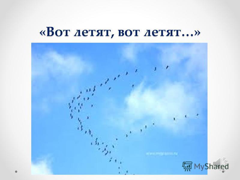 «Широко на Руси машут птицам согласные руки…»