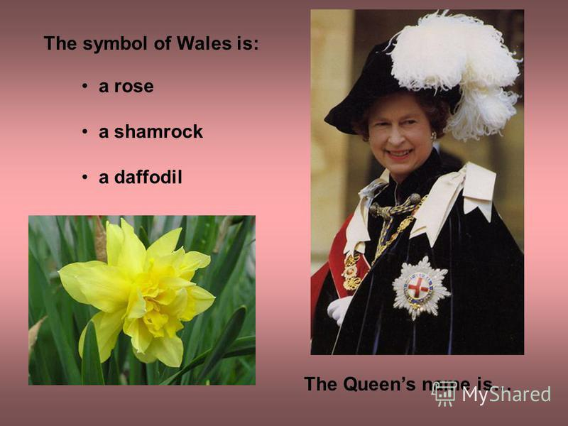 The Queens name is… The symbol of Wales is: a rose a shamrock a daffodil