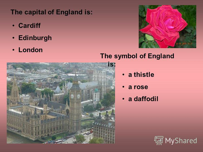 The capital of England is: Cardiff Edinburgh London The symbol of England is: a thistle a rose a daffodil