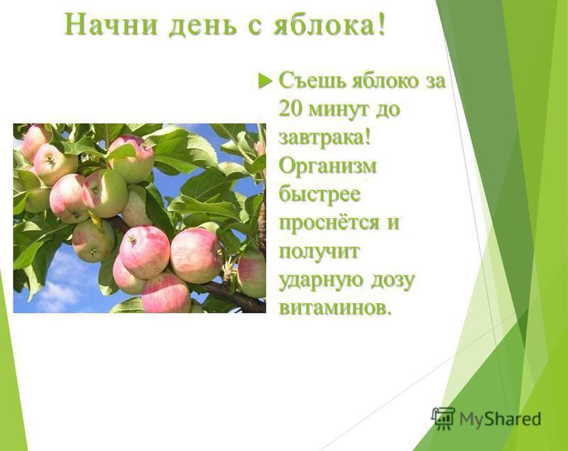 Начни день с яблока! Съешь яблоко за 20 минут до завтрака! Организм быстрее проснётся и получит ударную дозу витаминов. Съешь яблоко за 20 минут до завтрака! Организм быстрее проснётся и получит ударную дозу витаминов.