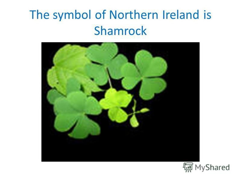 The symbol of Northern Ireland is Shamrock