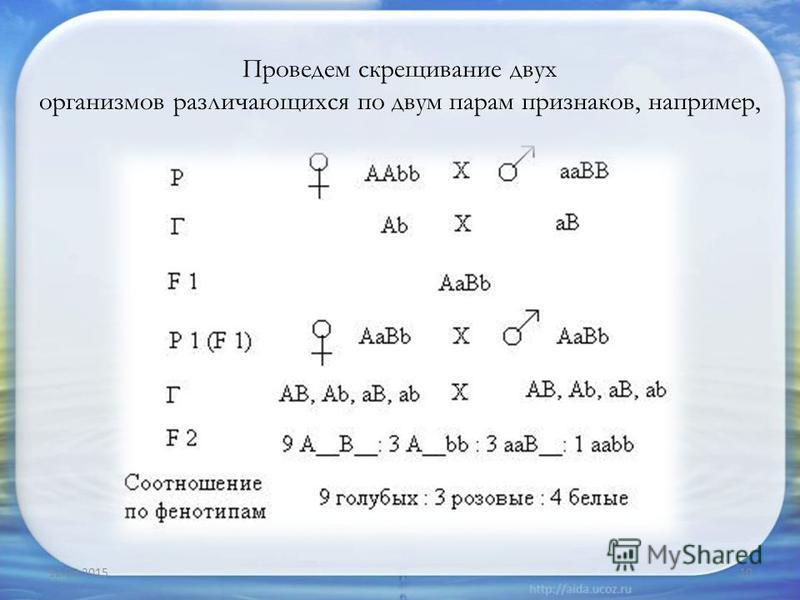 Проведем скрещивание двух организмов различающихся по двум парам признаков, например, 12.03.201510