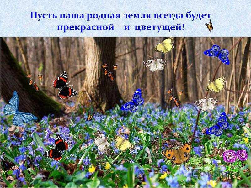 Пусть наша родная земля всегда будет прекрасной и цветущей!