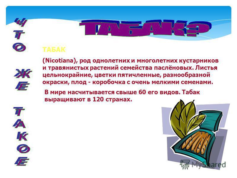 ТАБАК (Nicotiana), род однолетних и многолетних кустарников и травянистых растений семейства паслёновых. Листья цельнокрайние, цветки пятичленные, разнообразной окраски, плод - коробочка с очень мелкими семенами. В мире насчитывается свыше 60 его вид