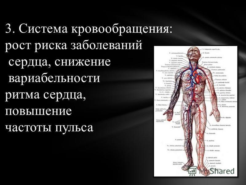3. Система кровообращения: рост риска заболеваний сердца, снижение вариабельности ритма сердца, повышение частоты пульса