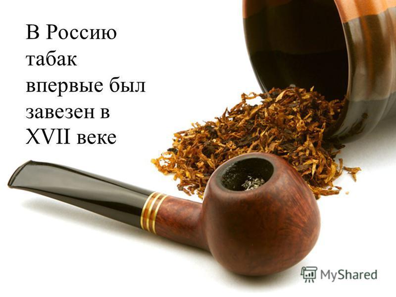 В Россию табак впервые был завезен в XVII веке