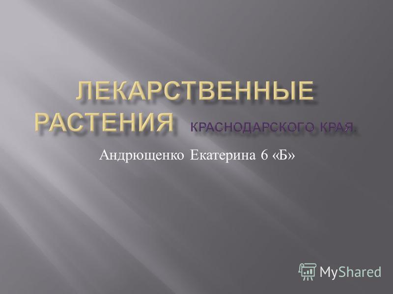 Андрющенко Екатерина 6 « Б »