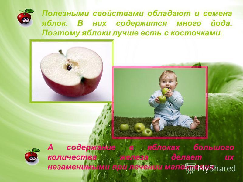 Полезными свойствами обладают и семена яблок. В них содержится много йода. Поэтому яблоки лучше есть с косточками. А содержание в яблоках большого количества железа делает их незаменимыми при лечении малокровия.