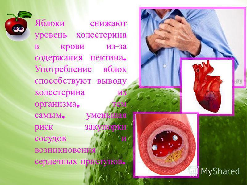 Яблоки снижают уровень холестерина в крови из - за содержания пектина. Употребление яблок способствуют выводу холестерина из организма, тем самым, уменьшая риск закупорки сосудов и возникновения сердечных приступов.