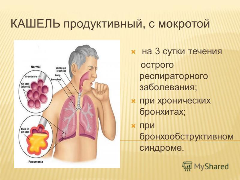 КАШЕЛЬ продуктикв ный, с мокротой на 3 сутки течения острого респираторного заболевания; при хронических бронхитах; при бронхообструктикв ном синдроме.