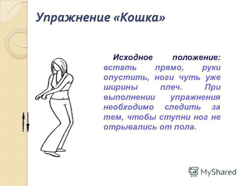 Упражнение « Кошка » Исходное положение: встать прямо, руки опустить, ноги чуть уже ширины плеч. При выполнении упражнения необходимо следить за тем, чтобы ступни ног не отрывались от пола.