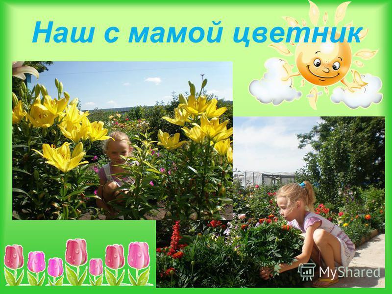 Наш с мамой цветник