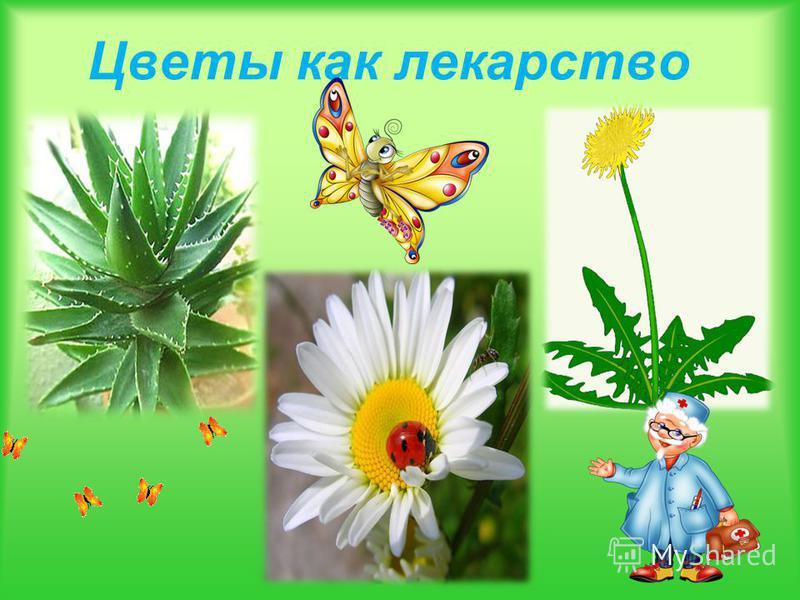 Цветы как лекарство