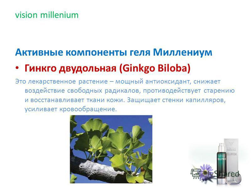 Активные компоненты геля Миллениум Гинкго двудольная (Ginkgo Biloba) Это лекарственное растение – мощный антиоксидант, снижает воздействие свободных радикалов, противодействует старению и восстанавливает ткани кожи. Защищает стенки капилляров, усилив
