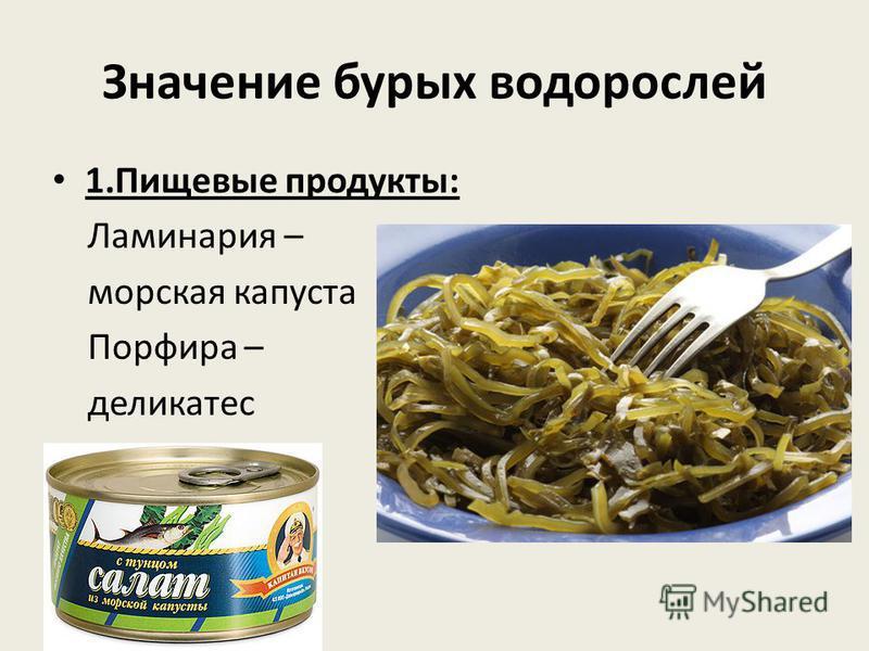 Значение бурых водорослей 1. Пищевые продукты: Ламинария – морская капуста Порфира – деликатес