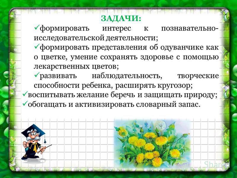 ЗАДАЧИ: формировать интерес к познавательно- исследовательской деятельности; формировать представления об одуванчике как о цветке, умение сохранять здоровье с помощью лекарственных цветов; развивать наблюдательность, творческие способности ребенка, р
