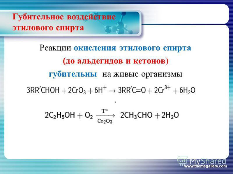 Выводы Реакции проведенные в ходе исследовательских работ доказывают двойственный характер этанола, то есть проявление им основных и кислотных свойств. www.themegallery.com