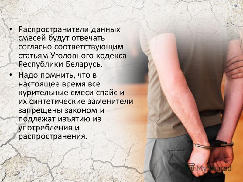 Распространители данных смесей будут отвечать согласно соответствующим статьям Уголовного кодекса Республики Беларусь. Надо помнить, что в настоящее время все курительные смеси спайс и их синтетические заменители запрещены законом и подлежат изъятию