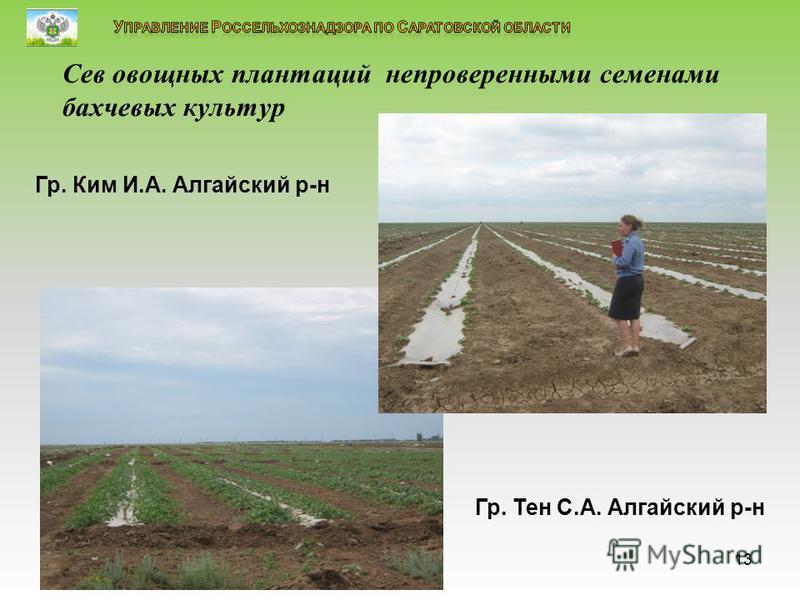 знакомство с семенами овощных культур