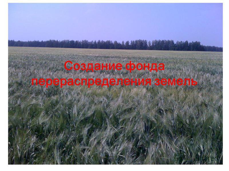 Создание фонда перераспределения земель