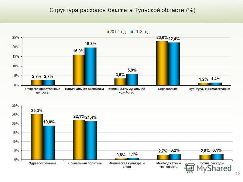 12 Структура расходов бюджета Тульской области (%)