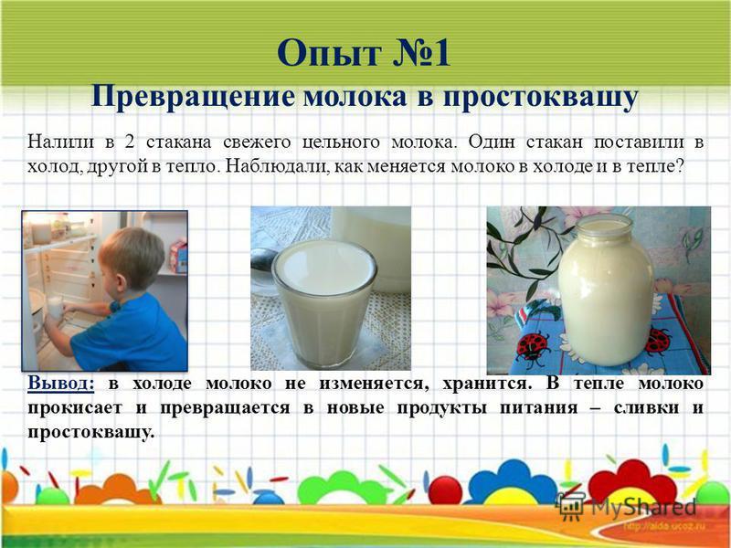 Опыт 1 Превращение молока в простоквашу Налили в 2 стакана свежего цельного молока. Один стакан поставили в холод, другой в тепло. Наблюдали, как меняется молоко в холоде и в тепле? Вывод: в холоде молоко не изменяется, хранится. В тепле молоко проки