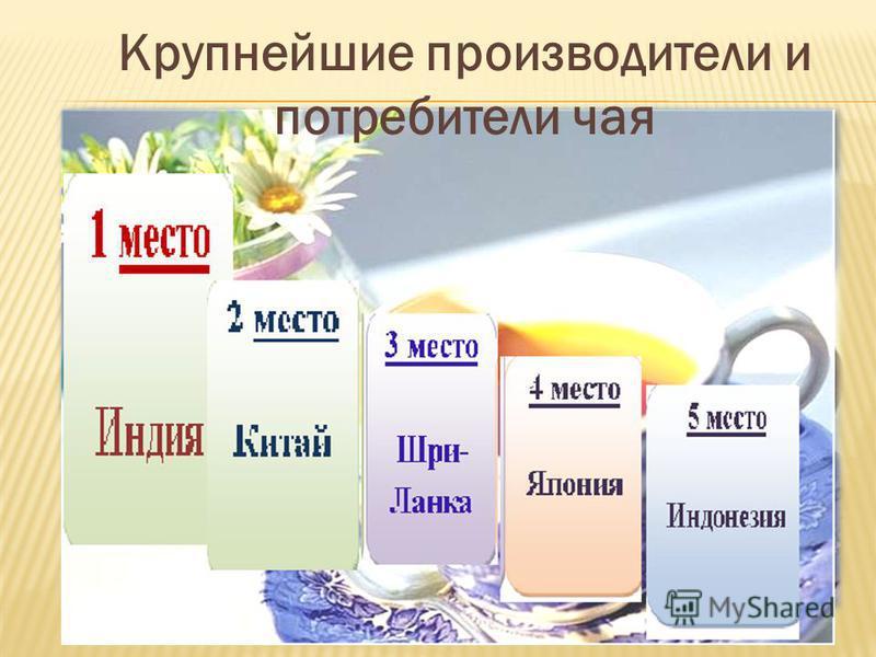 Крупнейшие производители и потребители чая