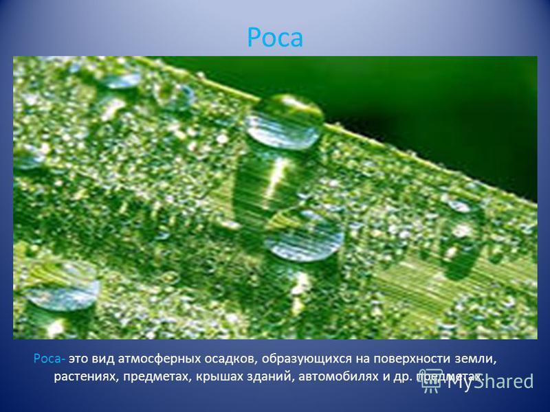 Роса Роса- это вид атмосферных осадков, образующихся на поверхности земли, растениях, предметах, крышах зданий, автомобилях и др. предметах.