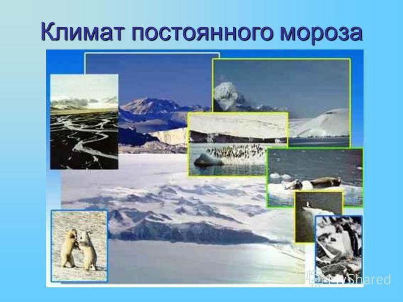 Климат постоянного мороза