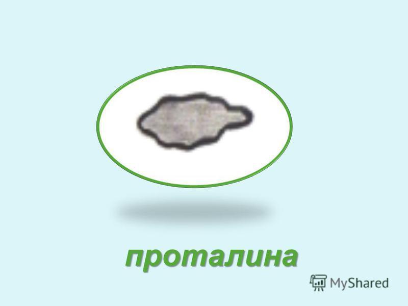 проталина