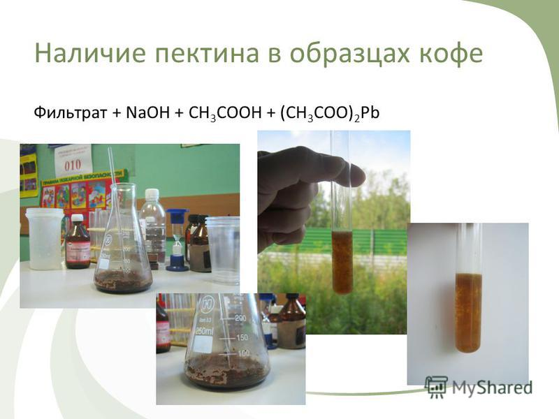 Наличие пектина в образцах кофе Фильтрат + NaOH + CH 3 COOH + (CH 3 COO) 2 Pb