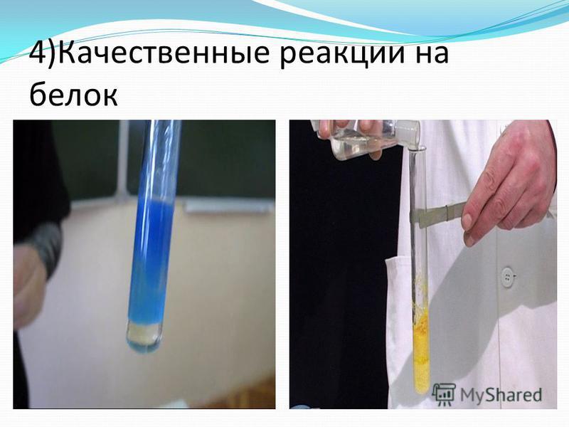 4)Качественные реакции на белок