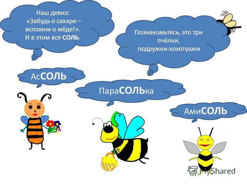 СОЛЬ Познакомьтесь, это три пчёлки, подружки-хохотушки Ас СОЛЬ Пара СОЛЬ ка Ами СОЛЬ Наш девиз: «Забудь о сахаре – вспомни о мёде!». И в этом вся СОЛЬ.