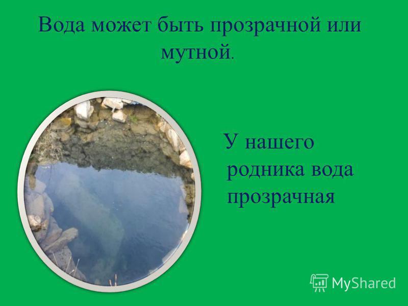 Вода может быть прозрачной или мутной. У нашего родника вода прозрачная