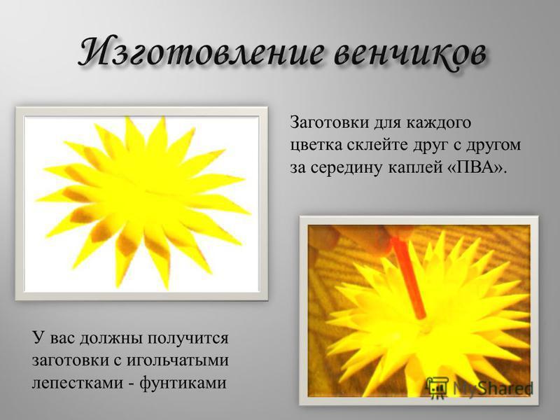 У вас должны получится заготовки с игольчатыми лепестками - фунтиками Заготовки для каждого цветка склейте друг с другом за середину каплей « ПВА ».