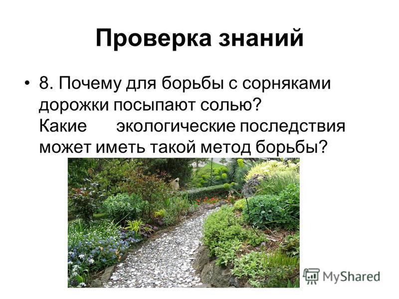 Проверка знаний 8. Почему для борьбы с сорняками дорожки посыпают солью? Какие экологические последствия может иметь такой метод борьбы?