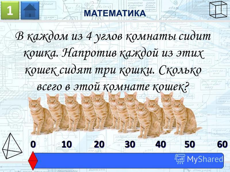 В каждом из 4 углов комнаты сидит кошка. Напротив каждой из этих кошек сидят три кошки. Сколько всего в этой комнате кошек? МАТЕМАТИКА 1 1 0603010204050