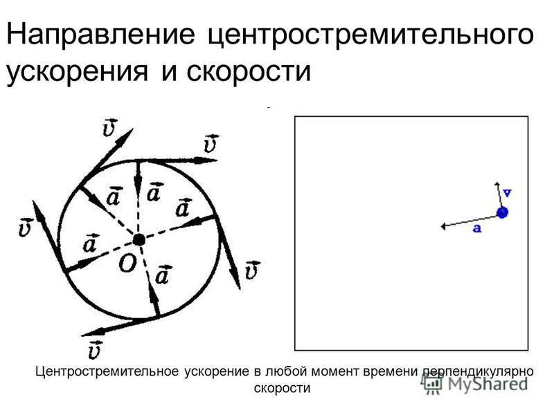 Направление центростремительного ускорения и скорости Центростремительное ускорение в любой момент времени перпендикулярно скорости