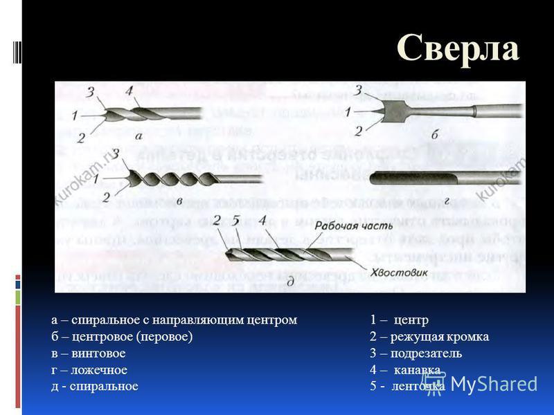 Сверла а – спиральное с направляющим центром б – центровое (перовое) в – винтовое г – ложечное д - спиральное 1 – центр 2 – режущая кромка 3 – подрезатель 4 – канавка 5 - ленточка