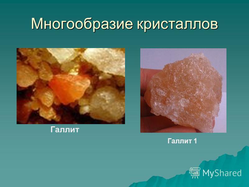 Многообразие кристаллов Галлит Галлит 1