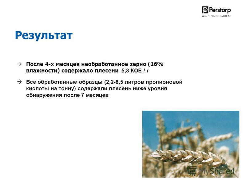 Результат После 4-х месяцев необработанное зерно (16% влажности) содержало плесени 5,8 КОЕ / г Все обработанные образцы (2,2-8,5 литров пропионовой кислоты на тонну) содержали плесень ниже уровня обнаружения после 7 месяцев