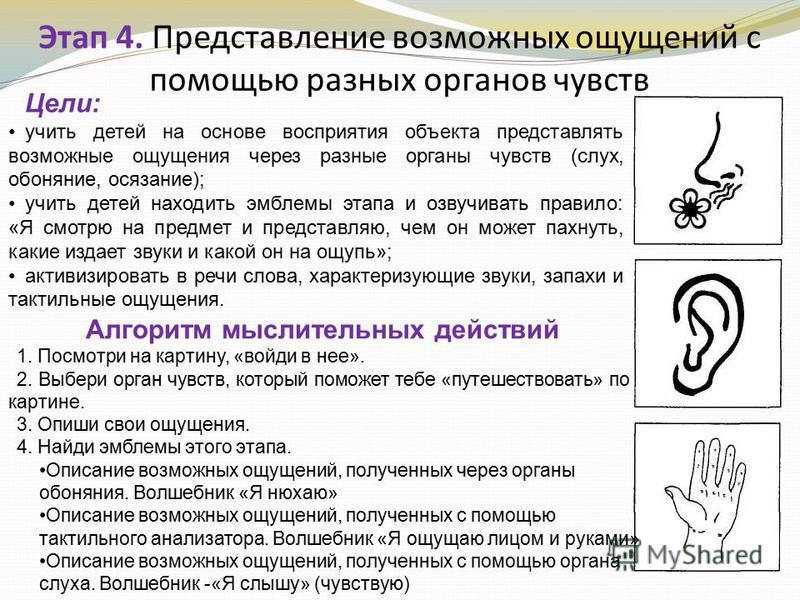 Этап 4. Представление возможных ощущений с помощью разных органов чувств Цели: учить детей на основе восприятия объекта представлять возможные ощущения через разные органы чувств (слух, обоняние, осязание); учить детей находить эмблемы этапа и озвуч